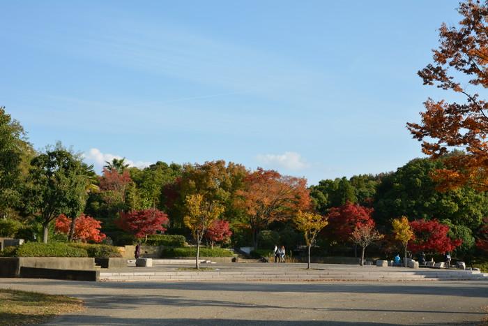 鶴見緑地の紅葉