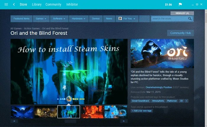 How to install Steam Skins