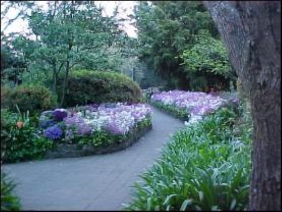 EG Waterhouse National Camellia Gardens Garden Locations