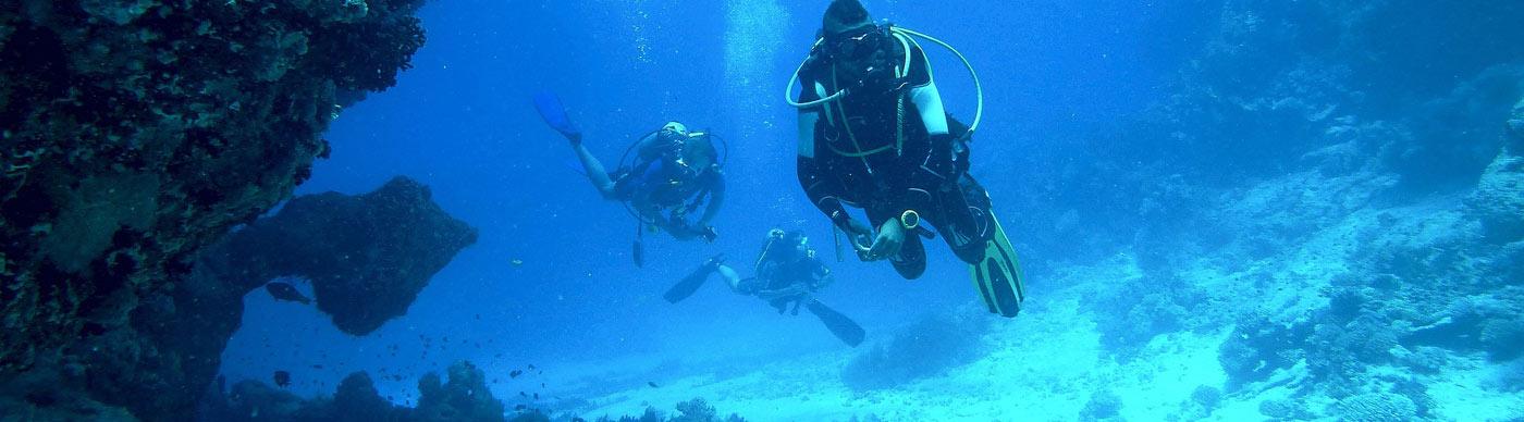 Diving Zanzibar immeriosni img