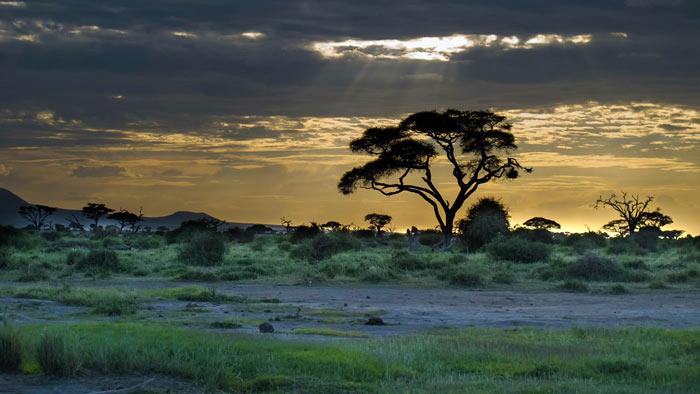 paesaggio africano mal d'africa
