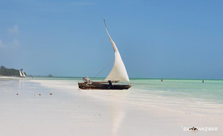 barca-in-arrivo-in-spiaggia