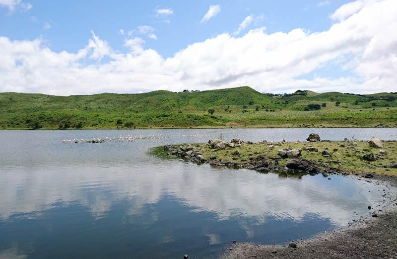 Arusha National Park img