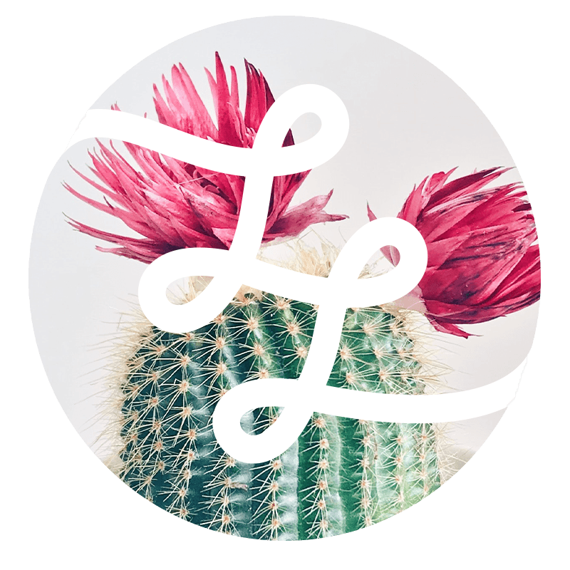 Logo Lebenlang