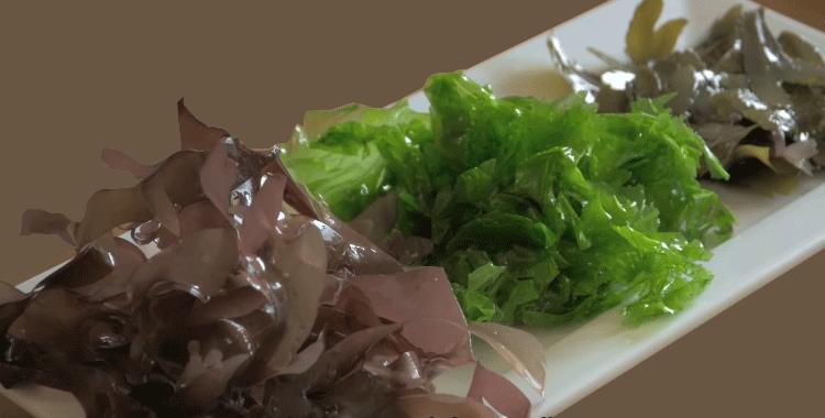 seaweed-health-benefits