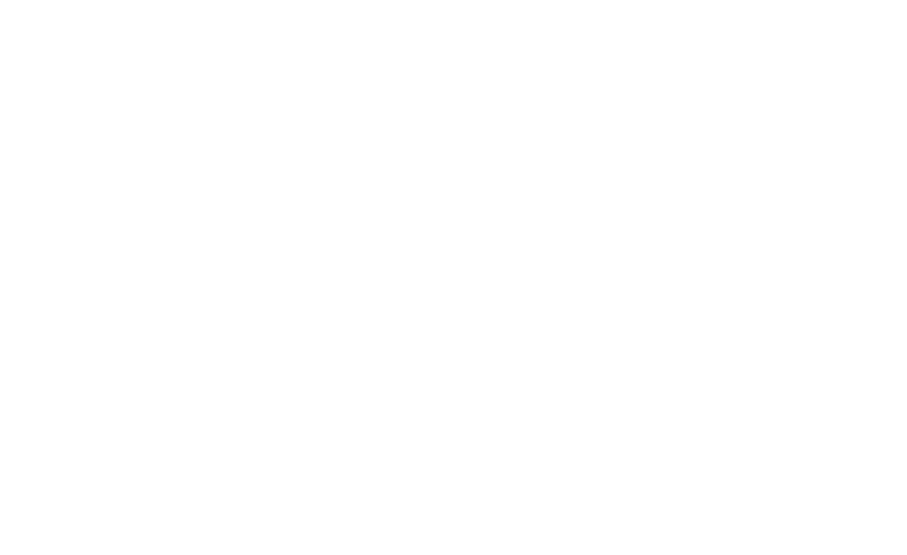 visa-white-logo-transparent