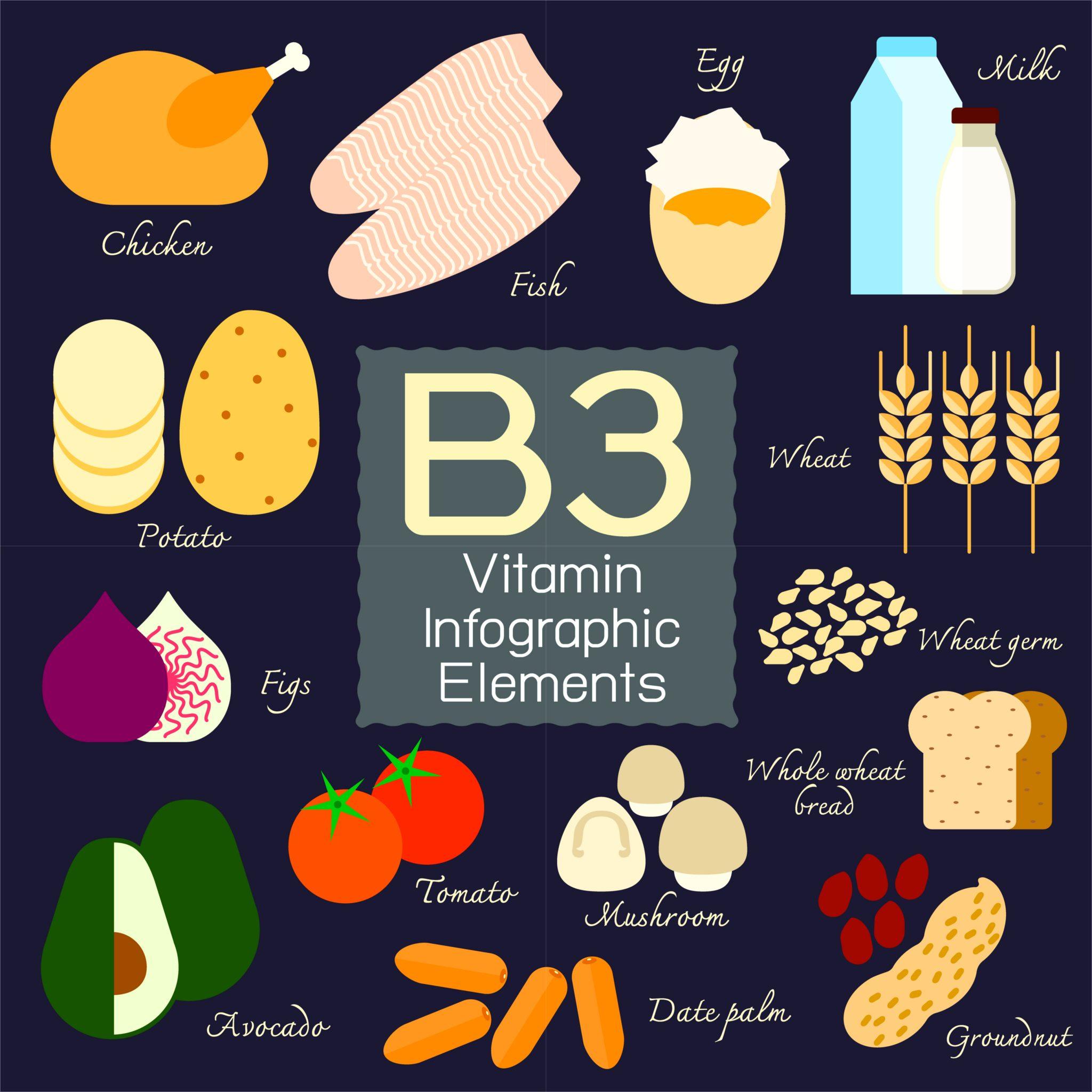 ビタミンB3ナイアシンの絵図