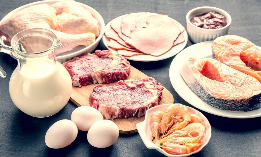 肉類と乳製品
