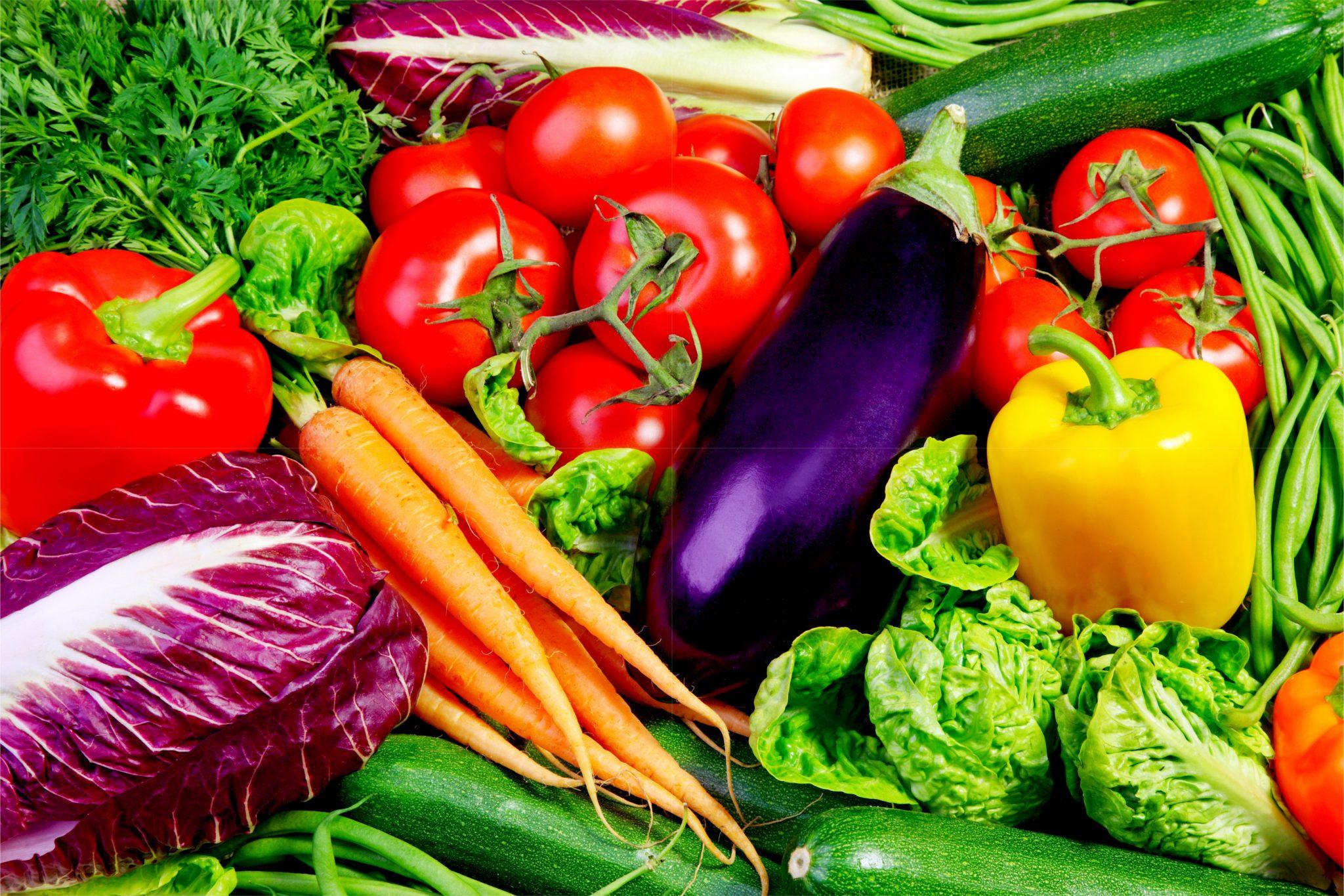 採れたての野菜を集めた写真