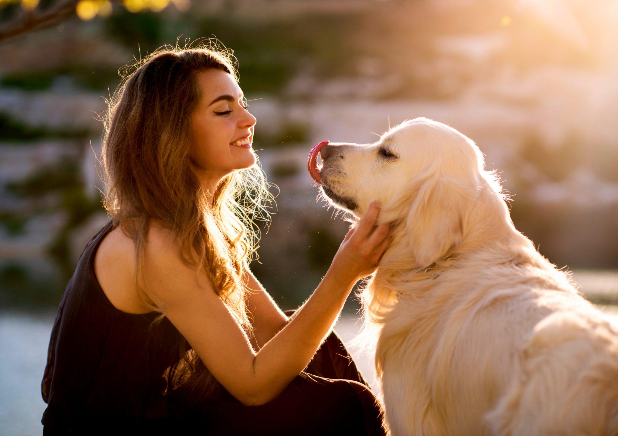 女性とペットの大型犬
