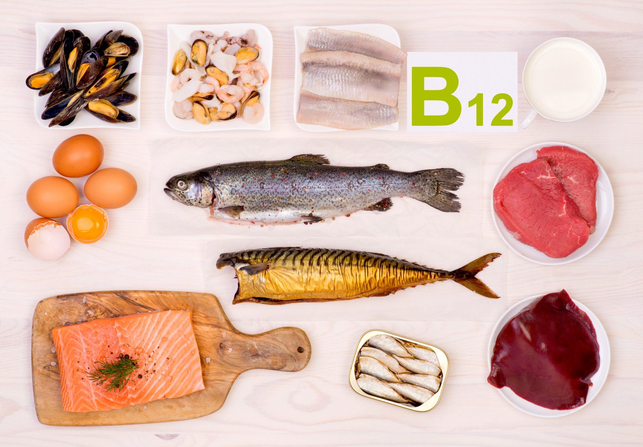 ビタミンB12を多く含む食材一覧