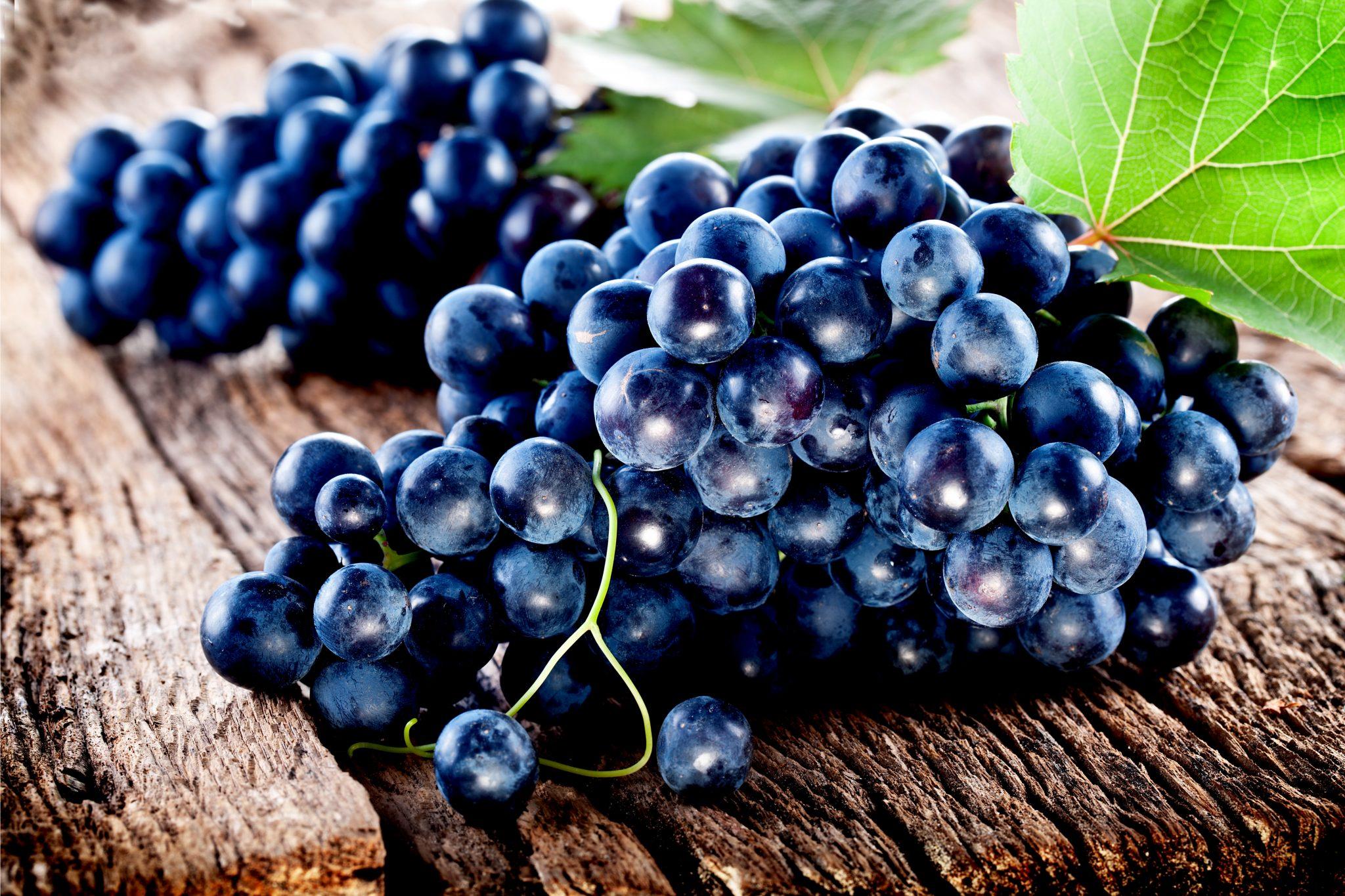 新鮮な葡萄