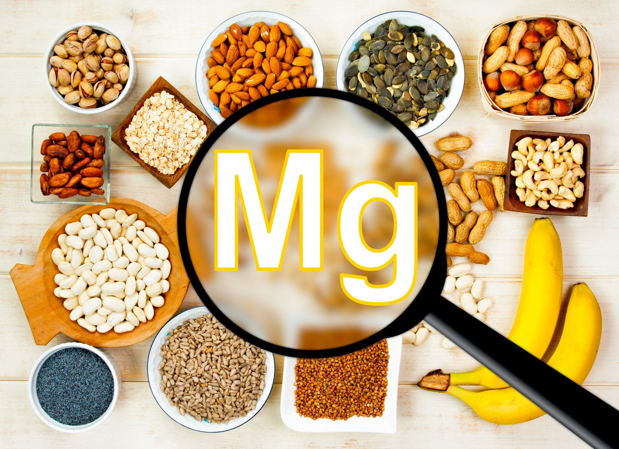 マグネシウムを多く含む食べ物