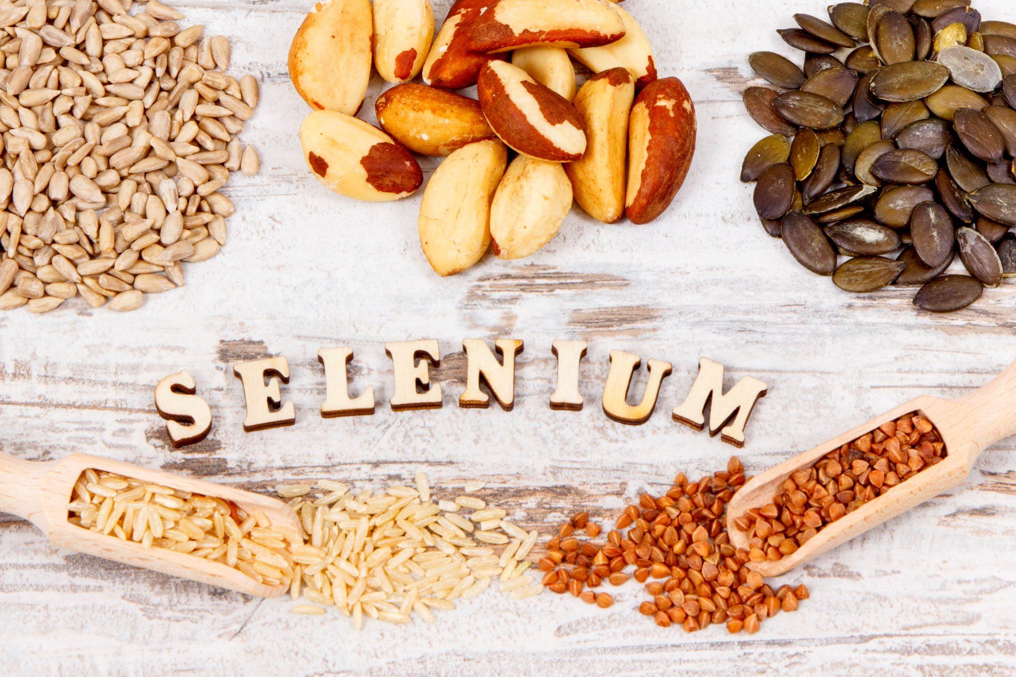 栄養成分セレンを多く含む食品一覧