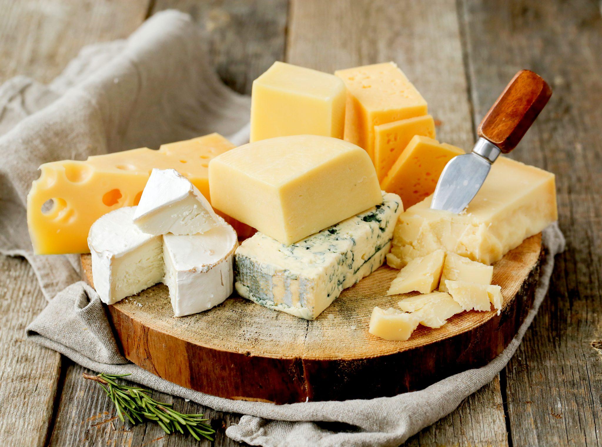 色んな種類のチーズ