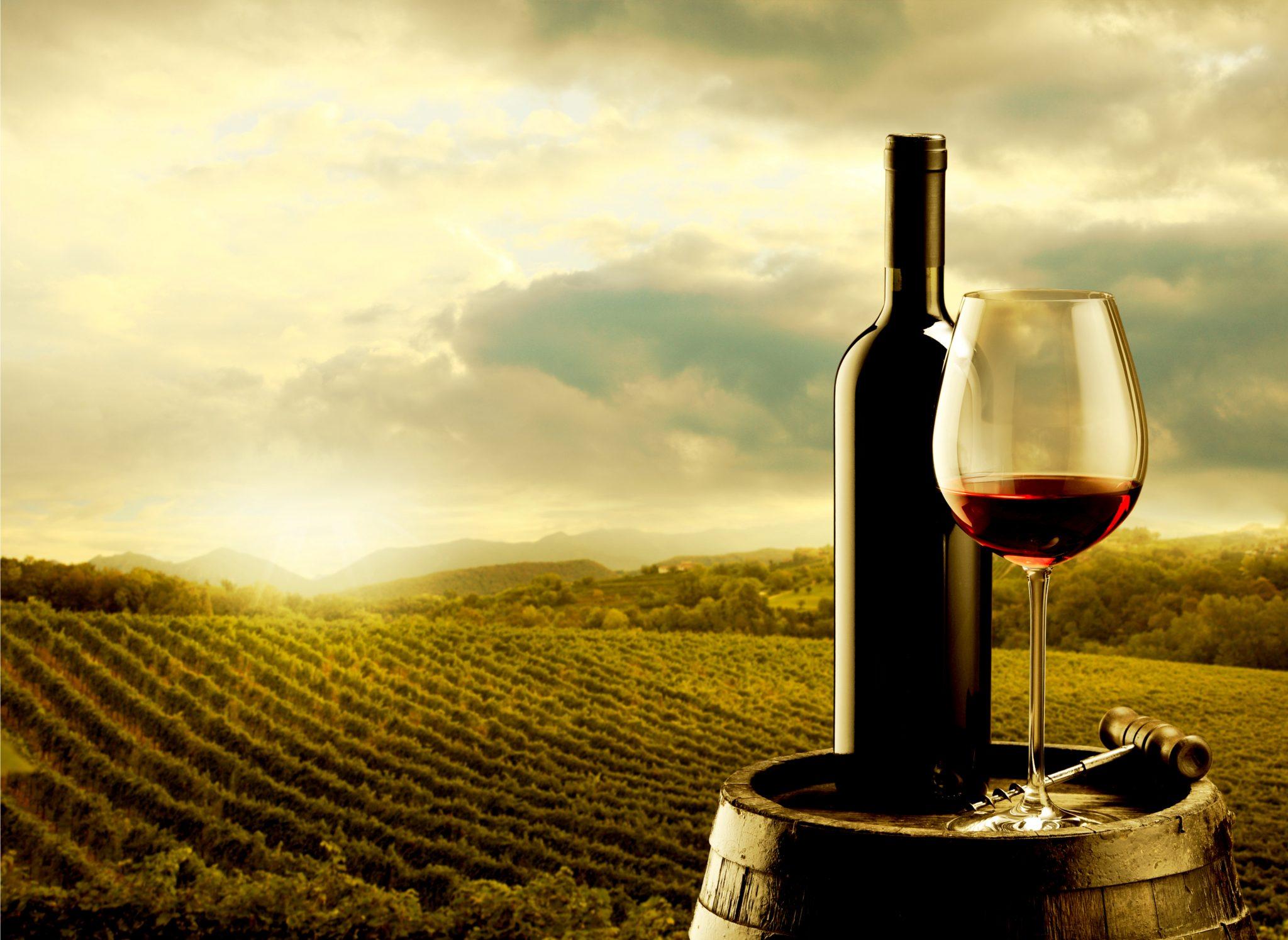 ワイン農場で飾られている赤ワイン