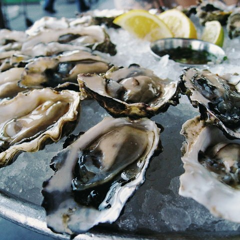 cheap-oysters-singapore-4
