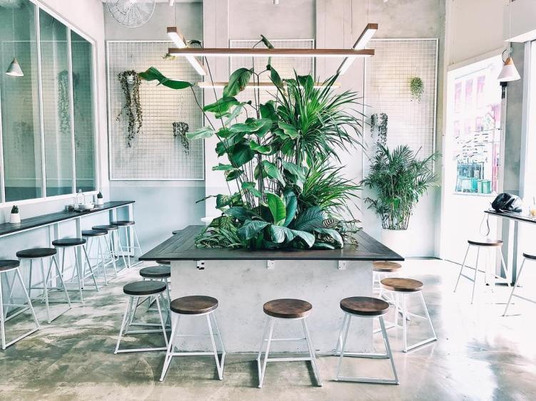 Beautiful Cafes - Five Oars Coffee Roasters Ambience