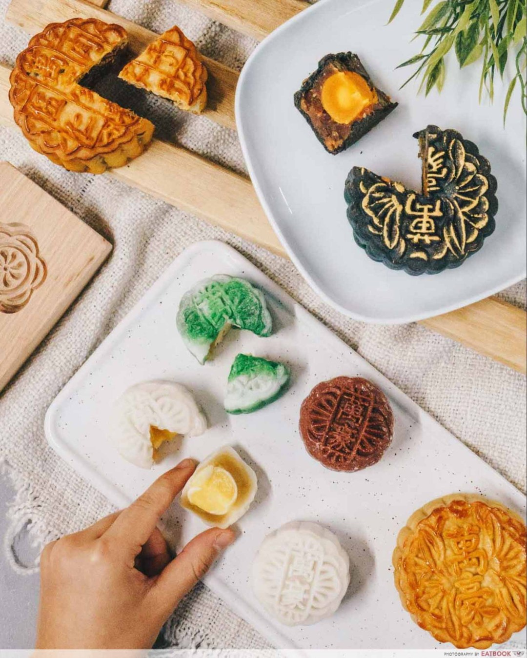 Mooncakes - Mocha and coconut