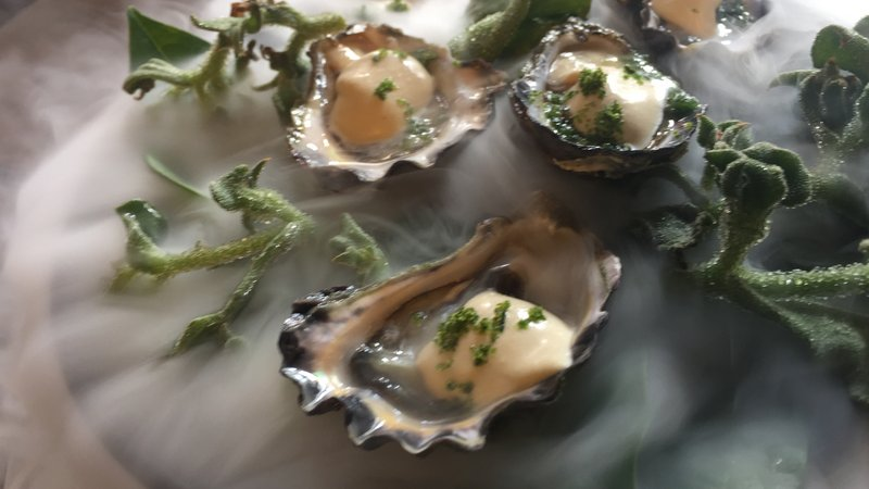 Moonlight flat oysters