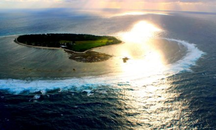Fly to Lady Elliot Island on the Great Barrier Reef from Brisbane