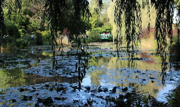 Exploring the garden of Claude Monet in Giverny