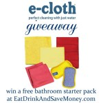 Green Spring Cleaning + e-cloth giveaway