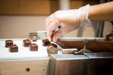 Chocolate Making class at Piece Love and Chocolate