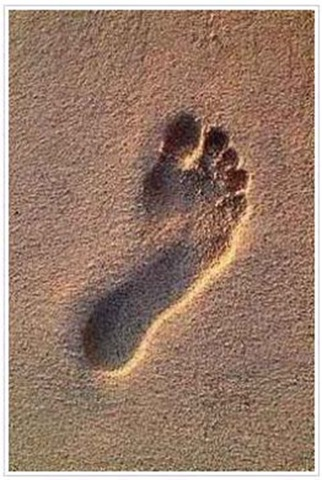 Heavy footprints of love and hate  (5/5)