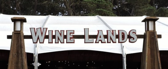Outside Lands 2014 024