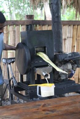 Sugar Cane Press, DR