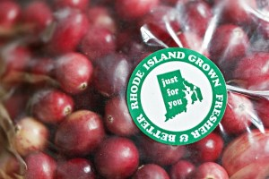 Rhode Island grown cranberries