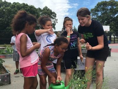 Farm Fresh RI Farm to School Gardening with Boys & Girls Clubs of Providence