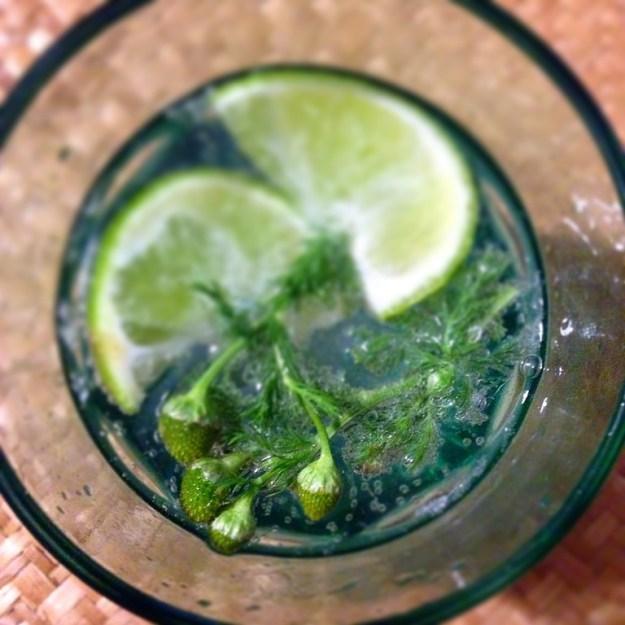 Gin on Lambay Island