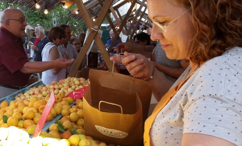 Selling apricots.