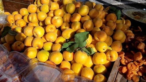 Apricots from Mallorca