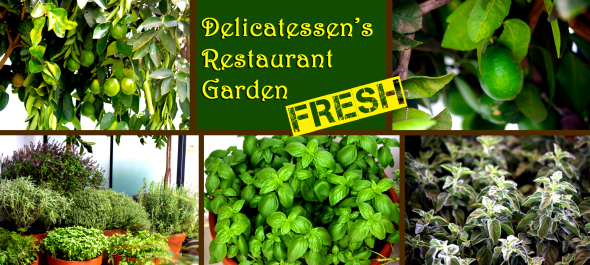 roof top garden delicatessen tel aviv