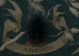andromeda tonks serpeverde non convenzionali articolo