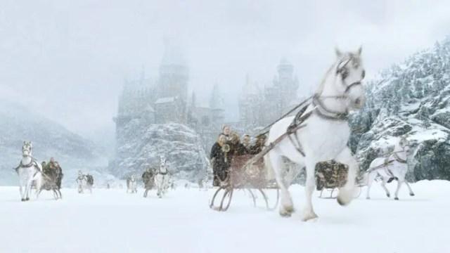hp2-horses-snow