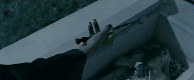 Bacchetta di Sambuco Voldemort
