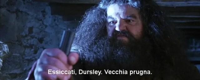Hagrid vecchia prugna