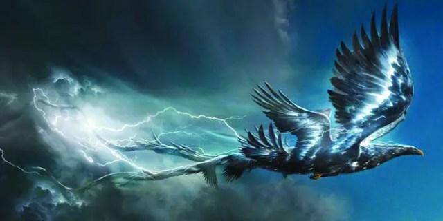 Thunderbird in action