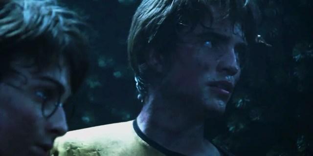 Cedric e Harry Campioni