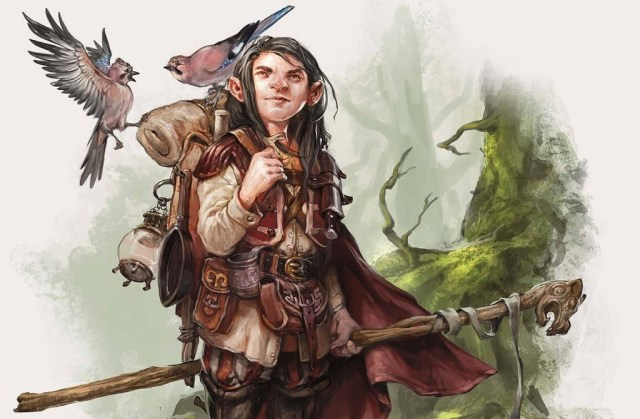 gnomo druido nel gioco dungeons & dragons