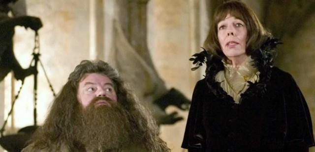 Coppia Hagrid Madame Maxime