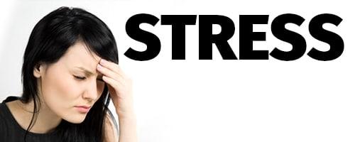 stress_v3