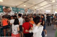 WSFC 2015 - Crowd (4)