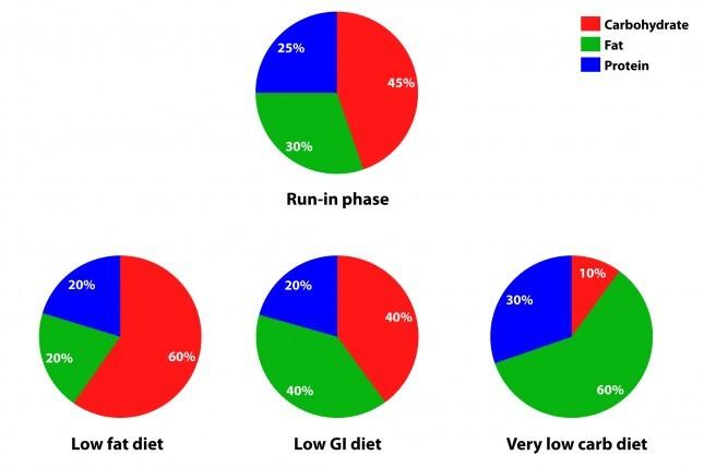 הרכב דיאטה