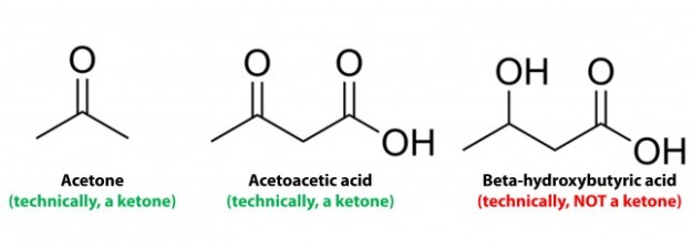 Image result for ketone bodies