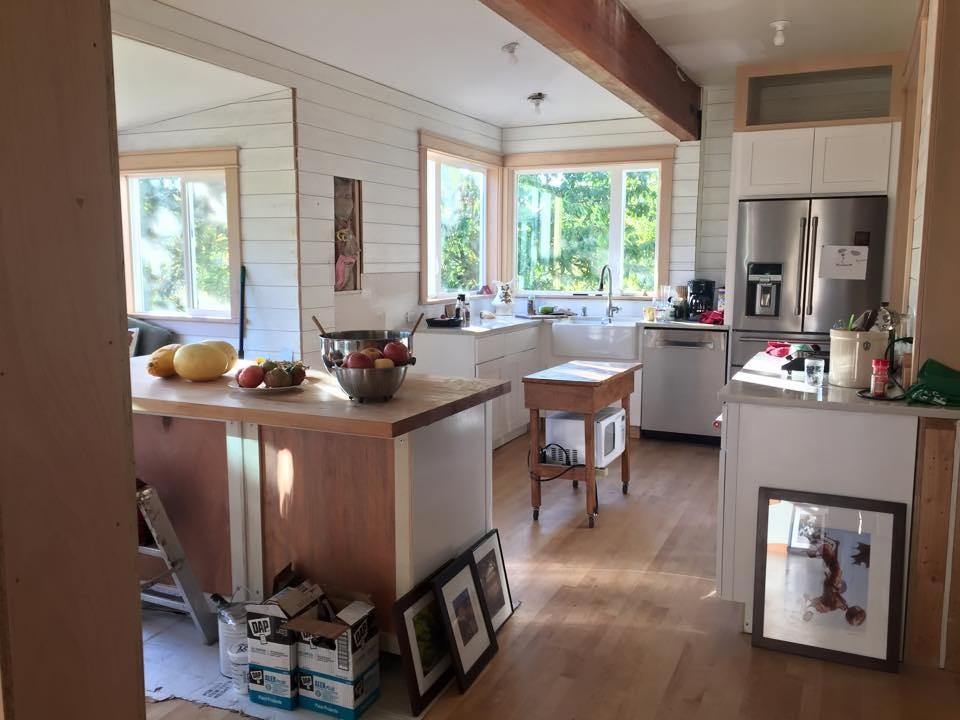 kitchenRemodel_1
